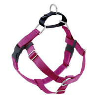 The Freedom No-Pull Harness- Raspberry