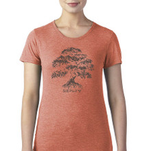 Banyan Tree Simplify women's T Shirt bronze heather