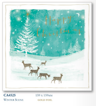 Christmas Cards - Winter Scene (10pk)