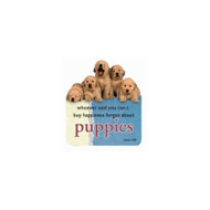 Golden Retriever Puppies Die-Cut Wit & Wisdom Magnet