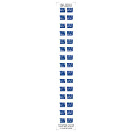 New York Giants Nail Sticker Decals (2 Pack)