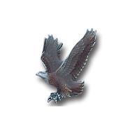 Free Form Eagle Lapel Pin