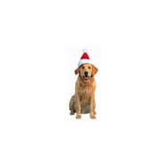 Golden Retriever with Santa Hat Die-Cut Photographic Magnet