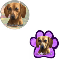 Bundle - 2 Items: Red Dachshund Absorbent Car Cup Coaster & Paw Magnet