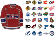 NHL Jersey Pin - Choose Your Team