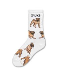 Border Collie Medium White Socks