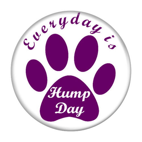 Everyday is Hump Day Dog Paw Print Refrigerator Magnets
