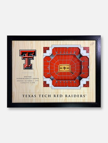 Texas Tech Red Raiders Three-Dimensional Twenty-Five-Layer View of United Supermarkets Arena Wall Decor