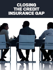 Closing the credit insurance gap? (available for immediate download)