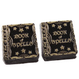 Funky Book of Spells Stud Earrings