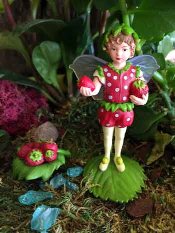 secret-garden-strawberry-flower-fairy-in-landscape-350-px-wide.jpg