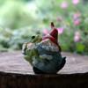 Miniature Gnome Hugging Frog