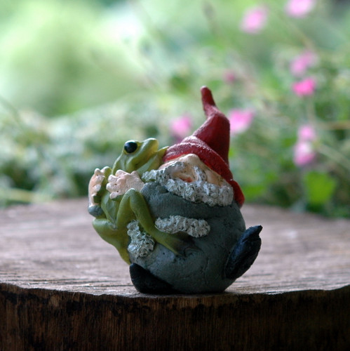 Miniature Gnome Hugging Frog