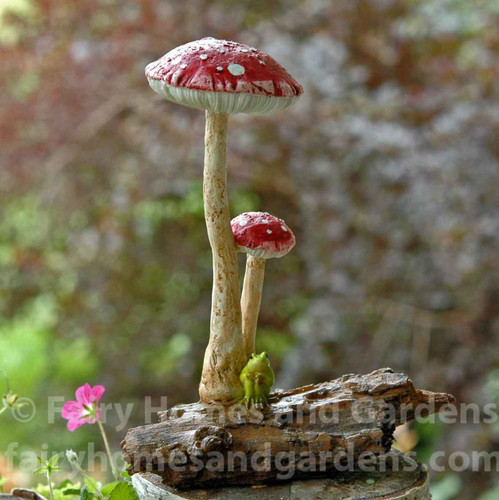 Miniature Red Mushrooms with Tiny Frog