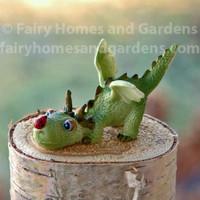 Miniature Baby Dragon with Tiny Ladybug