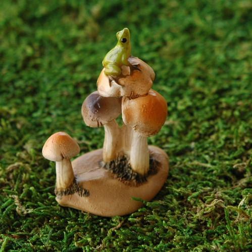Tiny Frog on Miniature Mushrooms