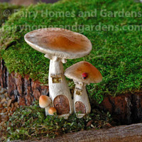 Miniature Toadstool Fairy Houses