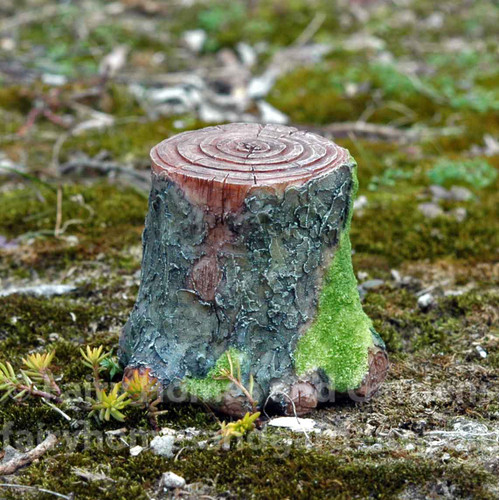 Decorative Mossy Tree Stump
