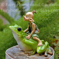 Miniature Pixie Riding a Frog