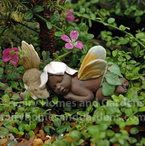 Miniature Ebony Fairy Baby Sleeping with Squirrel