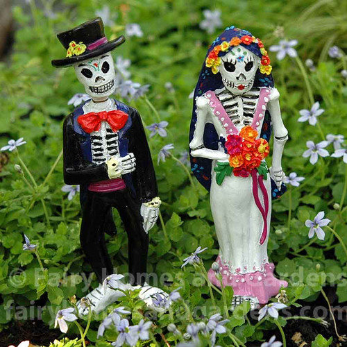 Day of the Dead Bride and Groom