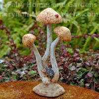 Miniature Hedgehog Sleeping on Mushrooms
