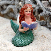 Miniature Mermaid Reading