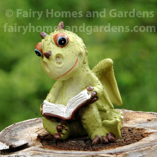 Miniature Dragon Reading