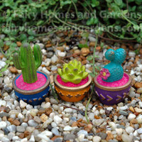 Miniature Gypsy Fairy Garden Cacti - Set of Three