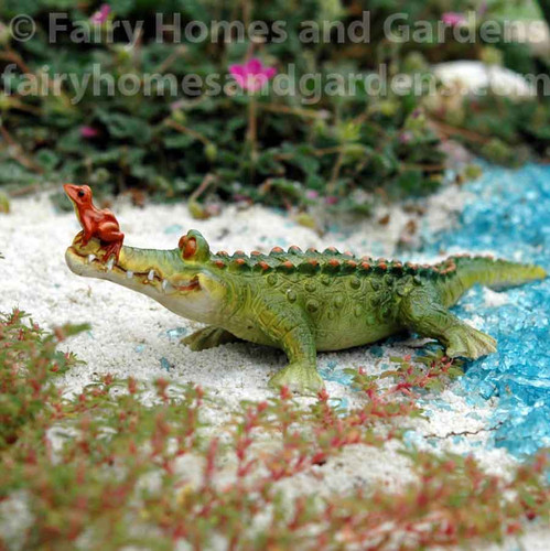 """Miniature Alligator """"Chompie"""" and Frog - Side View"""