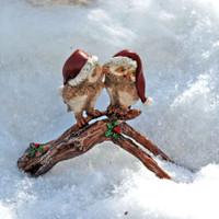 Mistletoe Christmas Owls Kissing