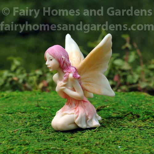 Top Collection Sweet Flower Fairy