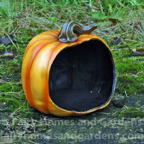 Hollow Pumpkin Display Container