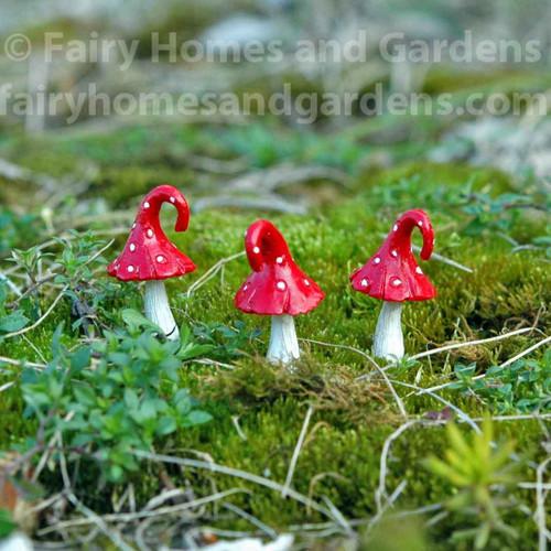 Miniature Red Curl Top Mushrooms - Set of Three