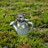 Miniature Raccoon in Watering Can - Alternate View