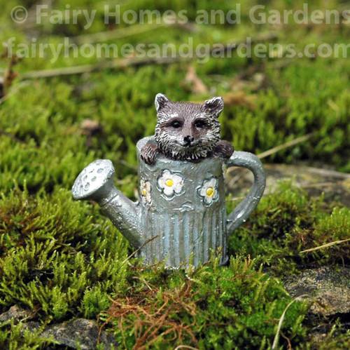 Miniature Raccoon in Watering Can