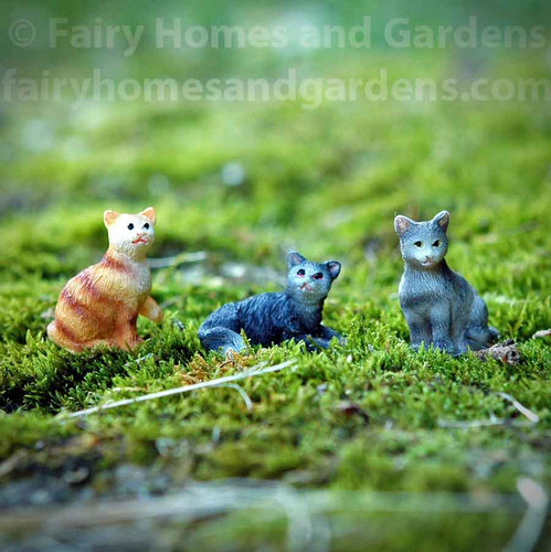 Miniature Kittens - Set of Three