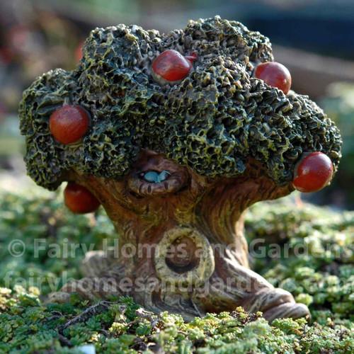 Miniature Fairytale Apple Tree