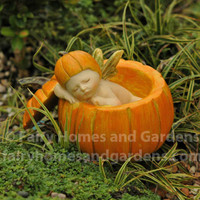 Fairy Baby Napping in a Pumpkin