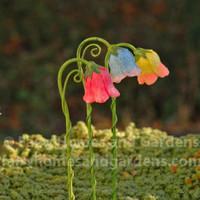 Flower Street Lamps