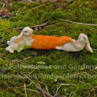 Two Tiny Rabbits with a Carrot