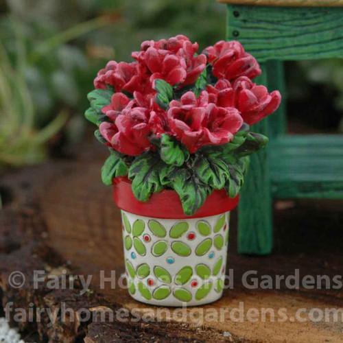 Miniature Potted Geraniums