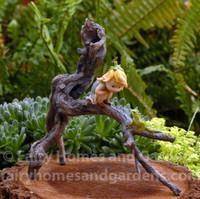 Miniature Garden Sprite with Tree Frog