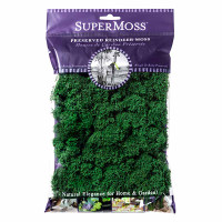 Preserved Reindeer Moss - Forest Green