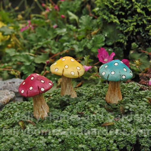 Miniature Polka Dot Mushrooms