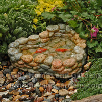 Miniature Rock Pond with Two Bright Orange Koi Fish