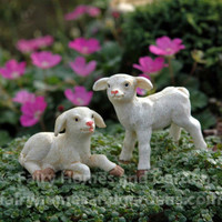 A Pair of Miniature Lambs