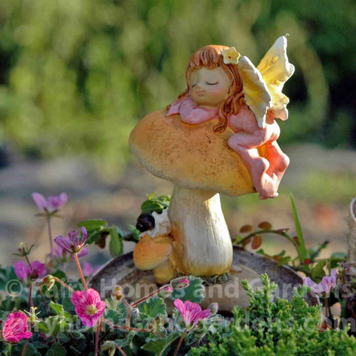 Little Fairy Sleeping on Mushroom