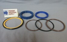 061-09619 CAMECO Industries hydraulic cylinder seal kit  Hercules Sealing Products