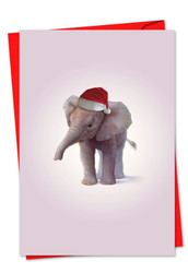 6726DXS - Christmas Zoo Babies: Note Card